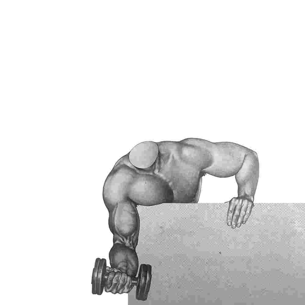 The Gym 005